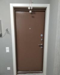 портал входной двери в цвете Ясень патина