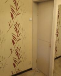Дверь Лайн 1 с алюминиевым молдингом в цвете Ива светлая горизонт